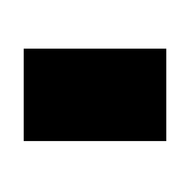 surfer_joe_logo